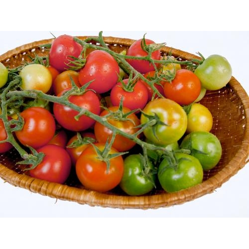Truss Tomato on Vine 500gr